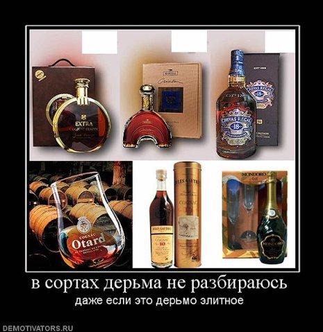 http://cs4425.vkontakte.ru/u6943371/100299755/x_491817c8.jpg