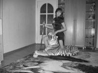 Анастасия Погорелова, 18 октября 1976, Морозовск, id110104671
