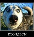 Фото Ирины Резановой №1