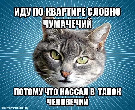 http://cs4444.userapi.com/u675869/140082175/x_163520f1.jpg