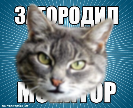 https://cs4444.vkontakte.ru/u675869/140082175/x_b7092d44.jpg