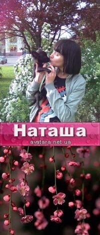 Наташа Шипаева, 21 сентября 1982, Херсон, id46485697