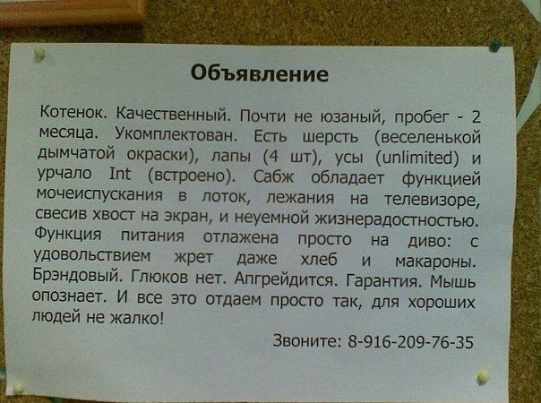Объявления и вывески...)))  X_cc44e0e7