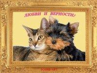 Jghg Gvbjhfvh, 14 августа , Днепропетровск, id94917549