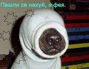 Юра Шамотиенко, 23 октября 1993, Донецк, id52463906