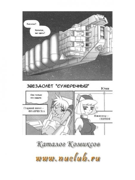 """Звездолет """"Сумеречный"""""""