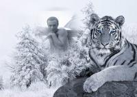 Rach Melikov