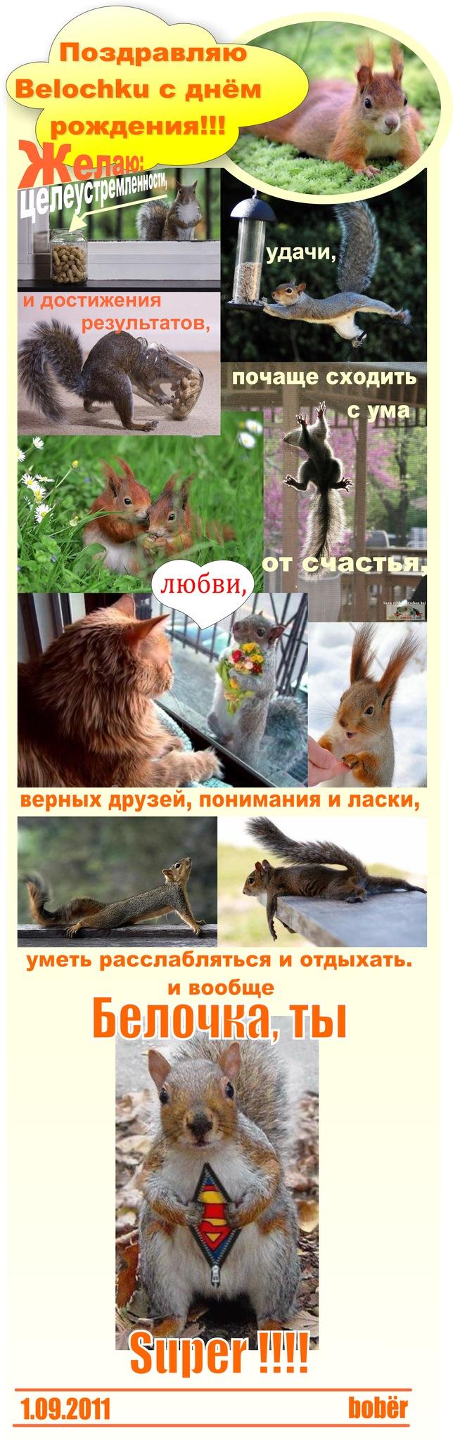 http://cs4460.vkontakte.ru/u10834284/120259584/w_094d5300.jpg