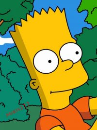 Bart Simpson, 1 августа , Киев, id69797931