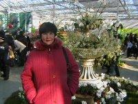 Елена Тимохина, 9 ноября 1989, Калуга, id51507763