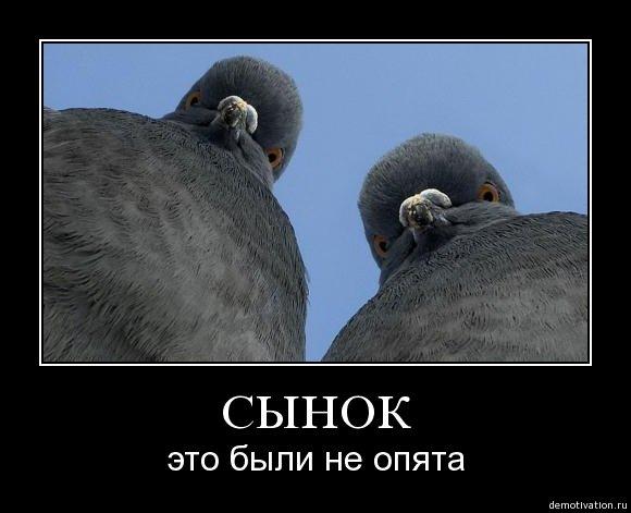 http://cs447.vkontakte.ru/u166378/94724299/x_e88b0740.jpg