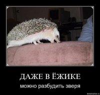 Аленочка Аленочка, 22 апреля 1992, Москва, id83337595