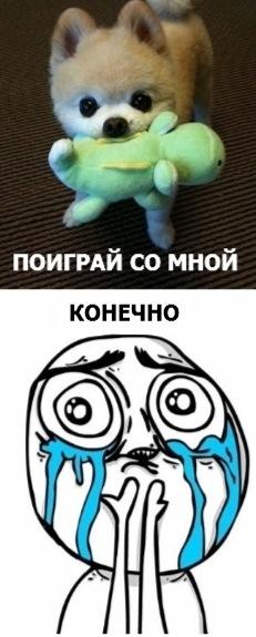 http://cs4470.vkontakte.ru/u33792334/-5/x_516d9bae.jpg