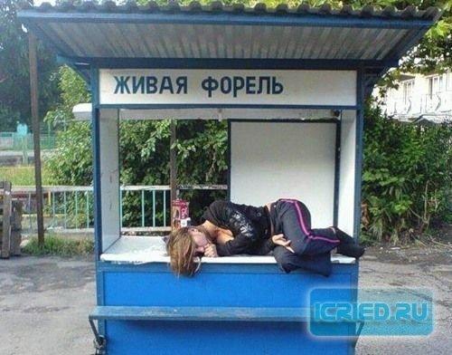 http://cs4479.vkontakte.ru/u11106138/93986441/x_4e0254dd.jpg