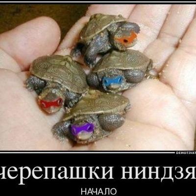 Саша Давыдов, 11 октября , Москва, id127486199