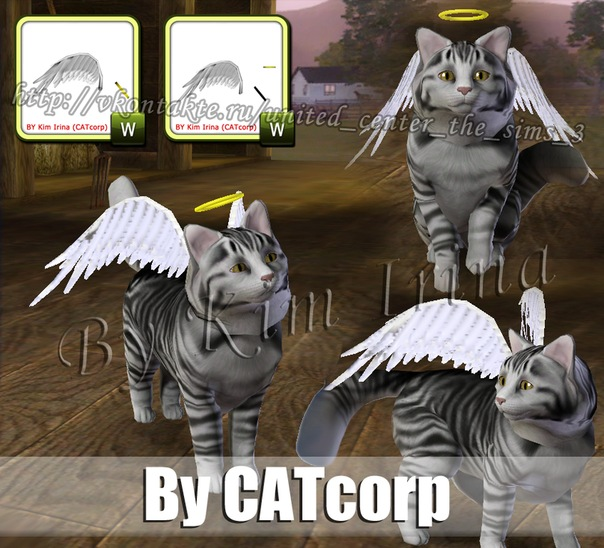 Мастерская CATcorp - Страница 3 X_5d73bc14