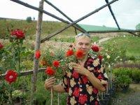 Дмитрий Белов, 8 ноября 1981, Новосибирск, id43472834