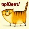 Светлана Комиссарова, 24 ноября , Сибай, id68432706