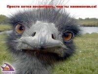 Пупсик Пупсик, Санкт-Петербург, id80589538