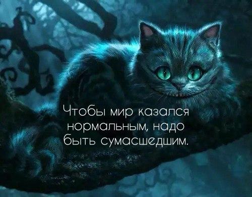 https://pp.userapi.com/c543107/v543107878/26a9a/yFzYz4hvAVM.jpg