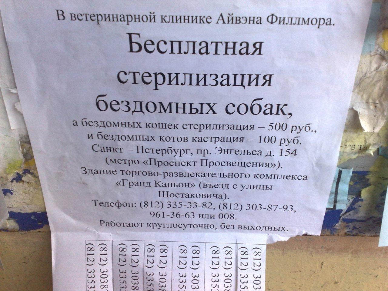 Оренбург объявления сдам квартиру