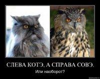 Ирина Гусева, Санкт-Петербург, id81450479