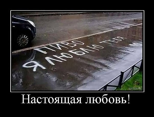 http://cs4528.vkontakte.ru/u44133303/111528553/x_9350df1c.jpg