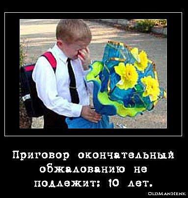 http://cs4528.vkontakte.ru/u44133303/111528553/x_b5d351b3.jpg