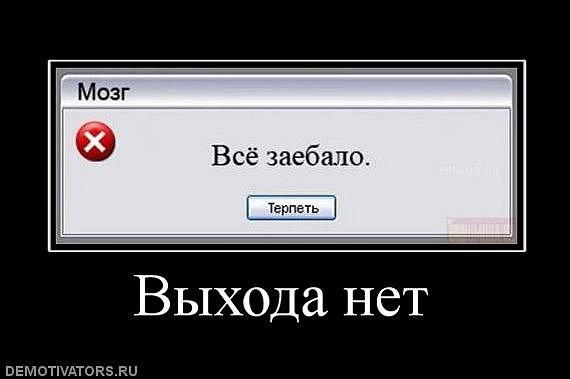 http://cs4556.vk.me/u179248/111939497/x_3e849f14.jpg