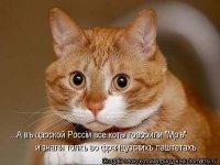 Dubik Dubik, 15 ноября 1974, Москва, id58551617