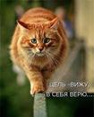 Екатерина Ростовых фото #33