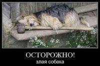 Михаил Якимов, 29 января 1996, Челябинск, id158655754