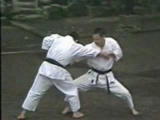The Nakayama Legacy - Jion Bunkai (Karate Shotokan)