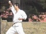 The Nakayama Legacy - Hangetsu Bunkai (Karate Shotokan)
