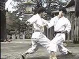 The Nakayama Legacy - Enpi Bunkai (Karate Shotokan)