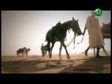 Сподвижники Пророка. Амир и Сад ибна Аби Вакас