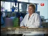 Вырезка новостей канала СТБ.