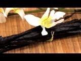Как правильно разрезать стручок ванили и достать кристаллы