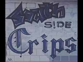 Crip Gang REAL MUTHA FUCCEN CRIPZ