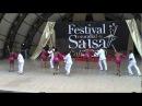 Salsa Viva Tango Vivo Eliminatorias Festival Mundial de Salsa Cali 2010