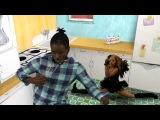 Pon De Floor featuring Afro Jack &amp VYBZ Cartel