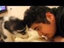 CayZer - Выдирает мои волосы (Сибирский Хаски/Siberian Husky)