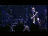 Schiller feat. Peter Heppner - I feel You (live in Berlin)
