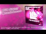 Jake Shanahan &amp Sebastien Lintz - Passion (incl Hardwell edit)