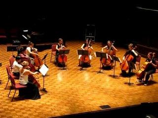 National Cello Institute - Viva La Vida