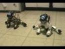 Танец пёсиков-роботов Sony AIBO ERS-7))