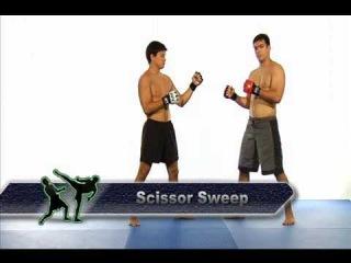 Система боя Лиото Мачида чемпиона мира по UFC