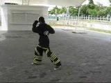 Hazard Minors - Vinarage Pure Hard (speedodevo's slide kick)