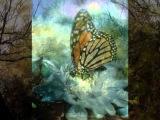 Simon Keenlyside: Le papillon et la fleur by Gabriel Fauré