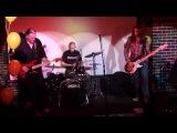The Vivisectors - Wodka und Bier (2011-08-06)